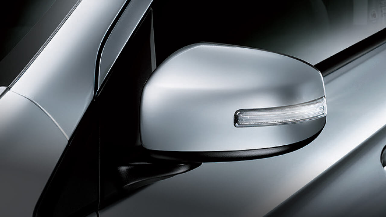 Door mirror with side turn lamps