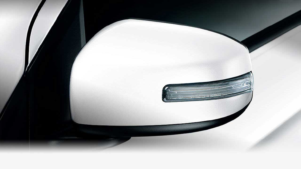 Door mirrors with turn signals